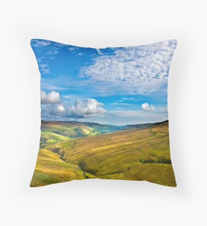 Summer View from The Buttertubs Throw Pillow