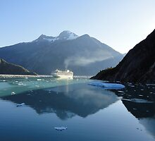 Amazing Morning in Tracy Arm Fjord by Goudy