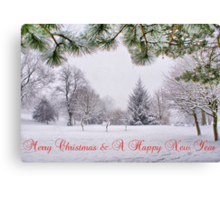 Greeting's Card ~ Merry Christmas & A Happy New Year ~ Canvas Print