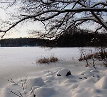 Lake covered in Snow by KhrisJuhlin