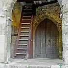 Main Entrance to St Mary's Church Brading by Rod Johnson