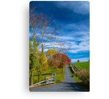 Long Private Drive in autumn glory Canvas Print