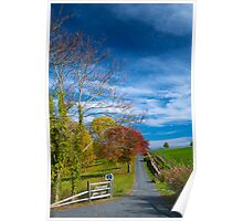 Long Private Drive in autumn glory Poster