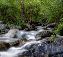 creek by Jeannie Peters