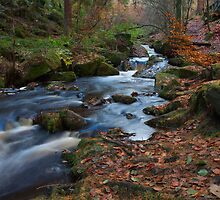 Wyming Brook. by Nick Atkin
