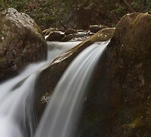 Mineral Creek Falls by Forrest Tainio