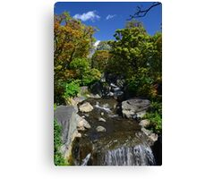 Colourful Stream Canvas Print