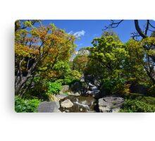 Colourful Stream Landscape Canvas Print