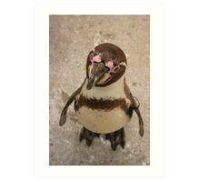 Curious Penguin Art Print
