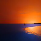 LOST IN THE SUNSET by leonie7