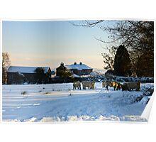 Winter scene, The Rower, County Kilkenny, Ireland Poster