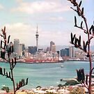 Auckland, New Zealand by apple88