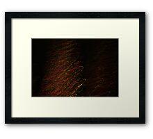 Suburb Christmas Light Series - Xmas Tree Framed Print