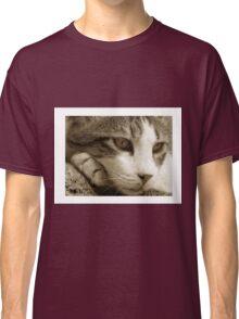 cat01_sepia_colour Classic T-Shirt