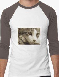 cat01_sepia_colour Men's Baseball ¾ T-Shirt
