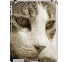 cat01_sepia_colour iPad Case/Skin