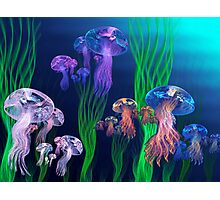 Apo Jelly Armada Photographic Print