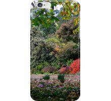 Nooroo - Bev Woodman iPhone Case/Skin