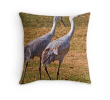 Don't Look Back... Throw Pillow