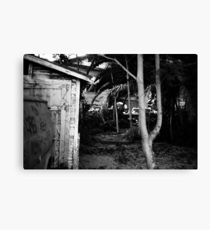 House with trees, August 2010 Canvas Print