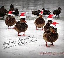 Baby it's cold outside...............................! by Rose Gallik