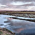 River Wyre . by Lilian Marshall