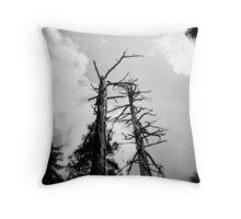 Burned Trees, Yosemite, CA May 2010 Throw Pillow