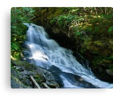 Waterfall on the Skagit River Trail Canvas Print