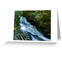 Waterfall on the Skagit River Trail Greeting Card