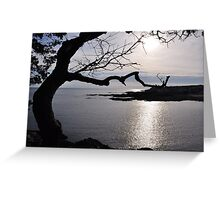 Funny Tree and Ocean View Greeting Card