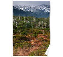 Warm 'n Cool Alaska Poster