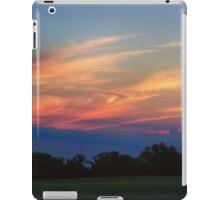 Beautiful Endings iPad Case/Skin