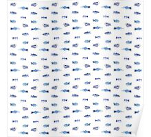Fish all over Poster