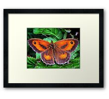 Perfectly Formed Framed Print