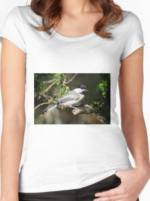 Chickadee Up Close Women's Fitted Scoop T-Shirt