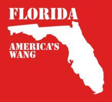 Florida, America's Wang by djvinnyvector