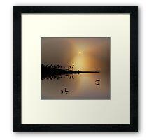1364 Framed Print