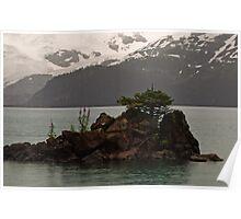 Island in Garibaldi Lake Poster
