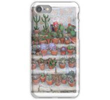 Cactus Garden, Mission, Santa Barbara iPhone Case/Skin