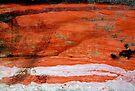 Red Sea Scuba Diver by richman