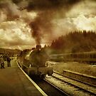 Bolton Abbey Station by Irene  Burdell