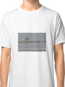 Crested Tern Classic T-Shirt