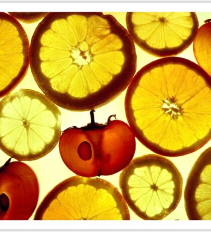 Fruit Land Sticker