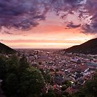 Heidelberg - Dusk by Michael Breitung