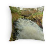 Spillway Slide Throw Pillow