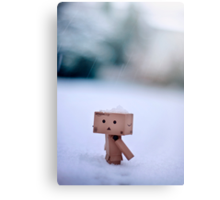 Danbo In The Snow Canvas Print