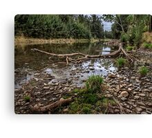 Ancient Water Canvas Print