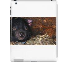 Tasmanian Devil in Den iPad Case/Skin