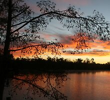 Lake Faussey Point Sunrise by roxie  broussard