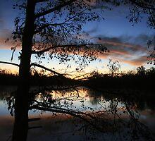 Lake Dautrieve Sunrise by roxie  broussard